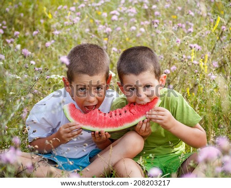 Children eating red watermelon on meadow background