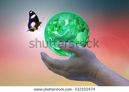 children going to be held in dad hand on the ground after blur background: Reforestation, sustainable world forest: Elements of this image furnished by NASA