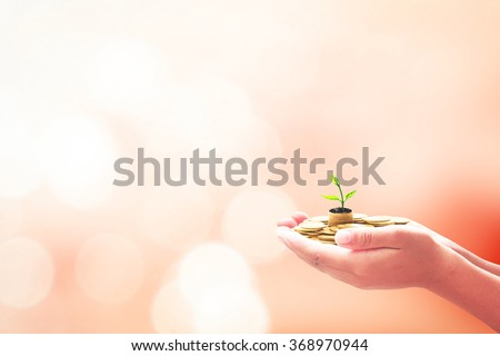 Children hand holding golden coins with young plant over blurred beautiful orange sunset background. Seedling in coins Money LIT Saving Banking Insurance Agent Fund ROI CSR Finance Time concept. - stock photo