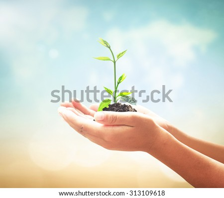 Children hand holding young plant on blurred world map of clouds background. Health Care, Environment Day, Trust, CSR, Organ Donation, Nature, Fresh, Family, Giving, Amazing Grace, Mercy Arbor concept - stock photo