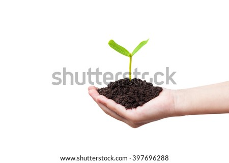 Children hands holding a green young plant on white background - stock photo