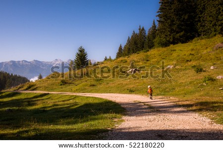 children hiking in the slovenian mountains