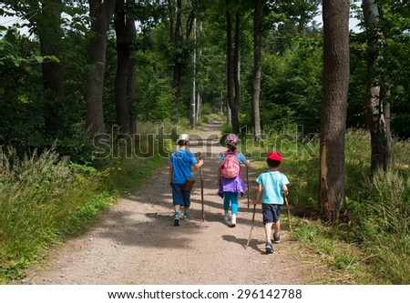 Children in the forest tourist trail