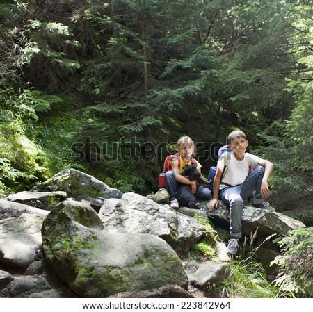 Children in woods - stock photo