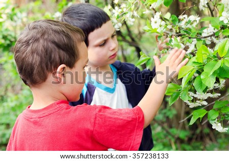 Children looking at blossoming cherry tree in a garden.