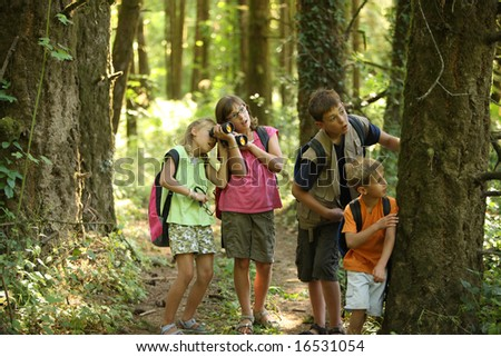 Children looking into woods