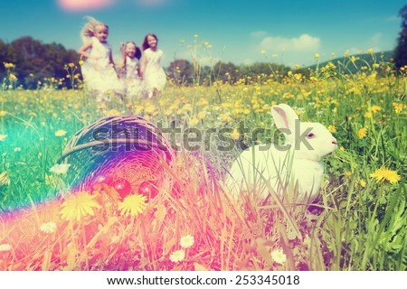Children on an Easter Egg hunt on a meadow in spring, in the foreground the Easter bunny is waiting, filtered image - stock photo