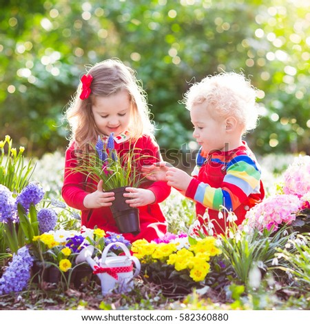 Children planting spring flowers in sunny garden. Little boy and girl gardener plant hyacinth, daffodil, snowdrop in flower bed. Gardening tools and water can for kids. Family working in the backyard