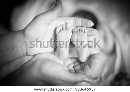 Children's feet of legs in the adult's hands, black-and-white