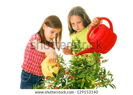 children watering plants - stock photo