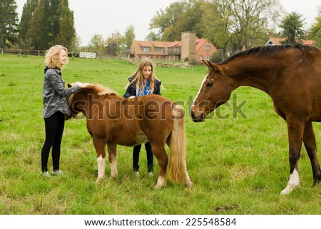 Children with the horses on the farm - stock photo