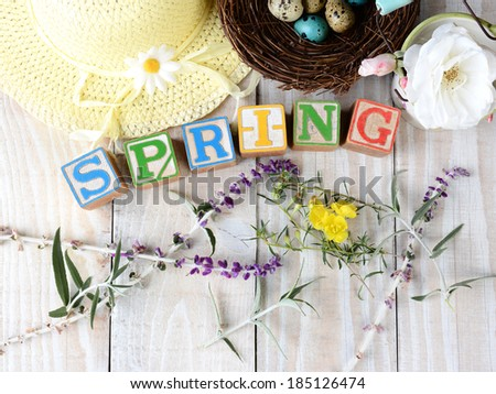 Childrens blocks spelling out Spring on rustic wooden boards The word is surrounded by flowers, a bonnet and a birds nest with eggs. Horizontal format. - stock photo