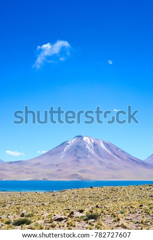 Chile, Atacama Desert, Miscanti lake on a clear, sunny summer sky. Puff from the volcano on the background.