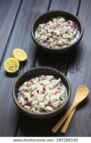 Chilean Ceviche of Southern Ray's bream fish (lat. Brama Australis, Spanish Reineta), onion, garlic, cilantro, lemon juice, lit with natural light (Selective Focus, Focus in middle of first ceviche)  - stock photo