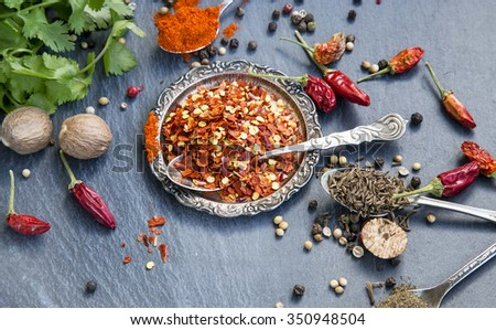 Chili Flakes with Spices, Coriander, Nutmeg,Paprika,Cumin and Pepper - stock photo