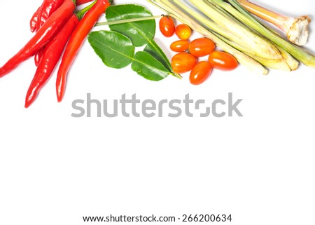 Chili pepper and flavoring herbs isolated on white background - stock photo