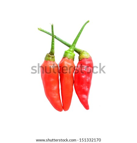 Chilli peppers isolated on a white background  - stock photo