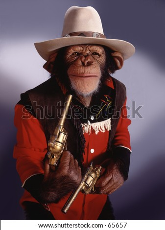 Chimp in cowboy outfit - stock photo