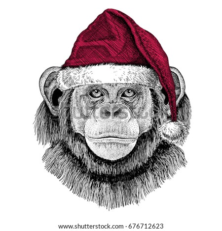 Christmas Monkey Stock Images, Royalty-Free Images & Vectors ...