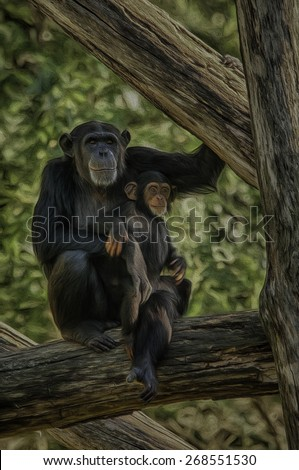Chimpanzee Mother with Baby - stock photo