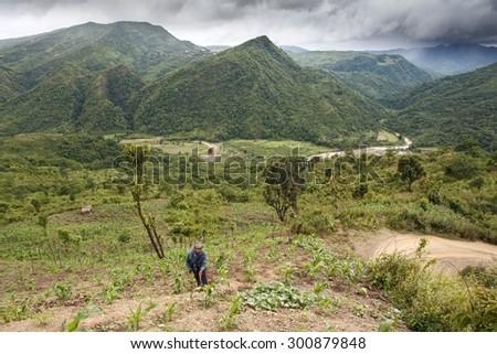 CHIN STATE, MYANMAR - JUNE 22 2015: Farmer tends to crops in the only recently opened for tourists Chin State Mountainous Region, Myanmar (Burma) - stock photo