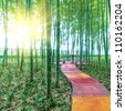 China's bamboo, grows in southern China. - stock