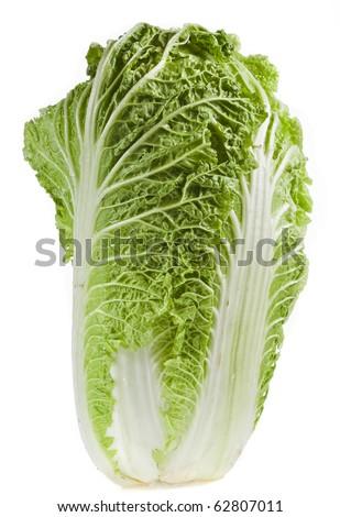 chinese cabbage isolated on white background - stock photo