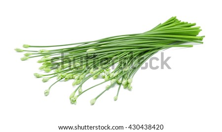 Chinese chives on white background - stock photo