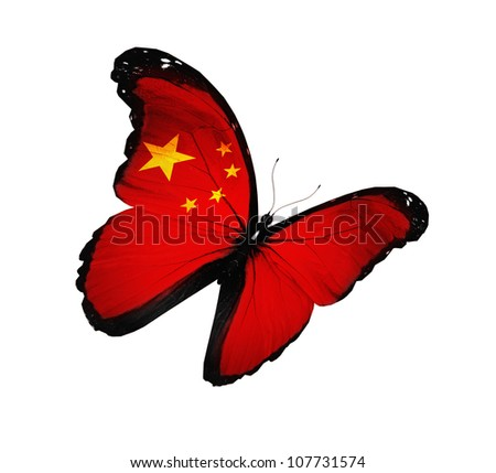 Chinese flag butterfly flying, isolated on white background - stock photo