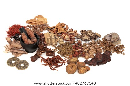 Chinese herb ingredients used in traditional herbal medicine with mortar and pestle and old feng shui coins over white background. - stock photo