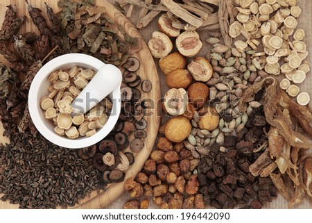 Chinese herbal medicine selection with a mortar and pestle. - stock photo