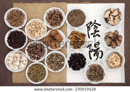 Chinese herbal medicine selection with calligraphy script of yin and yang symbols on rice paper on an old notebook over brown paper background. Translation reads as yin yang. - stock photo