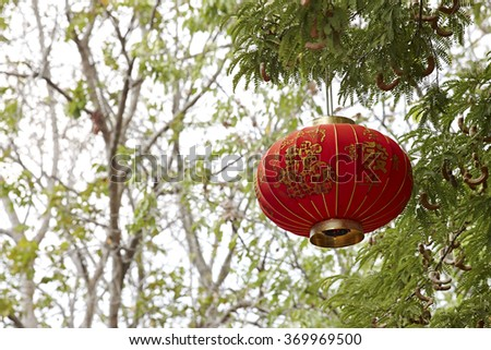 Chinese lantern decoration on the tree, Chinese means good luck,  FU mean good luck ,fortune and blessing,  Chinese wording translation, Spring and fortune - stock photo