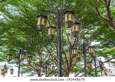 Chinese lanterns in the garden - stock photo