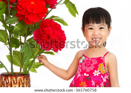 Chinese little girl wearing in Red posing with flowers greeting for Chinese New Year in isolated white background.