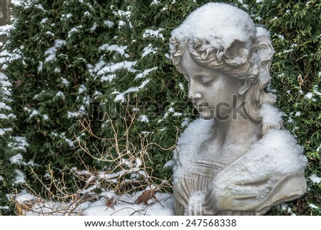 Chinese mass production Polyresin female bust in front of conifer hedge and faded plant covered with snow in a garden  Closeup view for book cover, brochure, flyer, magazine, CD design, website