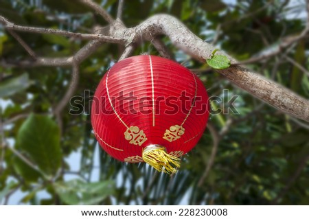 Chinese new year decoration, Traditi onal lantern and plum blossom on a festive background - stock photo