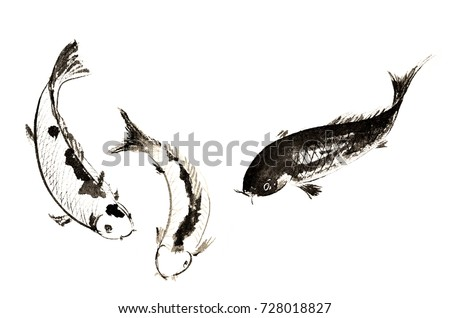 Asian carp stock images royalty free images vectors for Decorative carp