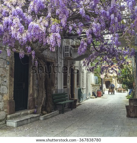 CHIOS ISLAND, GREECE - APRIL 23, 2015; Typical narrow street in Chios island in Greece. - stock photo