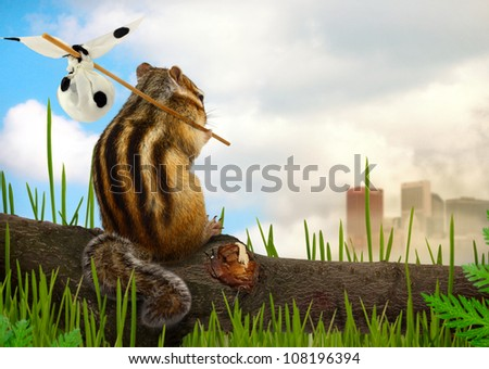 chipmunk emigrant, environment and ecology concept - stock photo