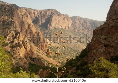 Chisos Mountain entrance canyon at sunrise - stock photo