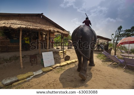 CHITWAN NATIONAL PARK, SAURAHA, NEPAL- CIRCA SEPTEMBER 2009: Unidentified man rides protected Asian Elephant (Proboscidea Elephas maximus) thru village circa September 2009 Chitwan National Park. - stock photo