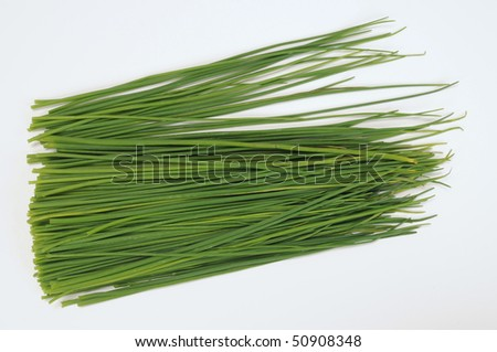 Chives. - stock photo