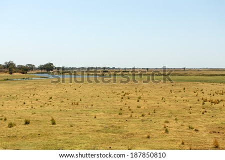 Chobe National Park, Botswana, Africa - stock photo