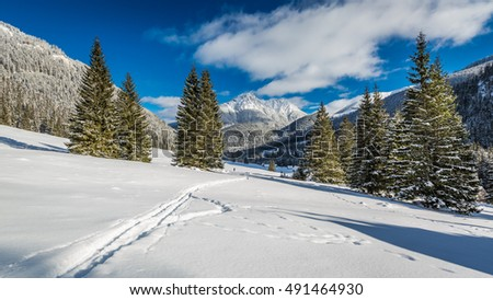 Chocholowska Valley in winter at sunrise, Tatra Mountains, Poland