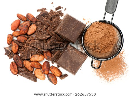 Chocolate and cocoa on white background - stock photo