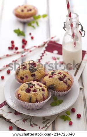 Chocolate and cranberries cakes with a bottle of milk - stock photo