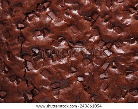 Chocolate brownie cake - stock photo