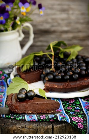 Chocolate cake decorated with fresh juicy berries outdoor - stock photo