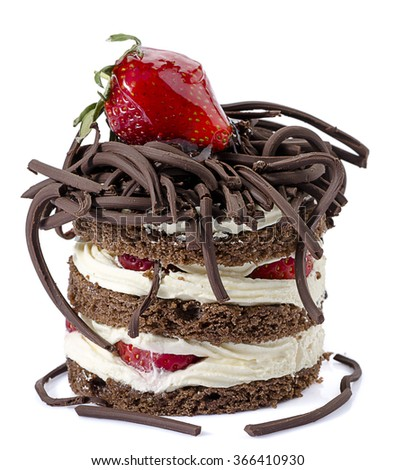 Chocolate Cake Isolated - stock photo